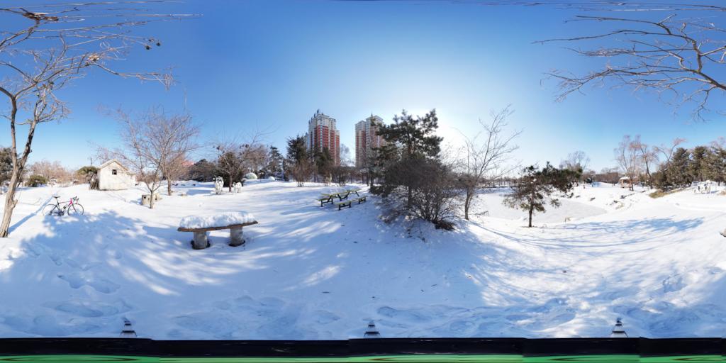 百鸟园雪景