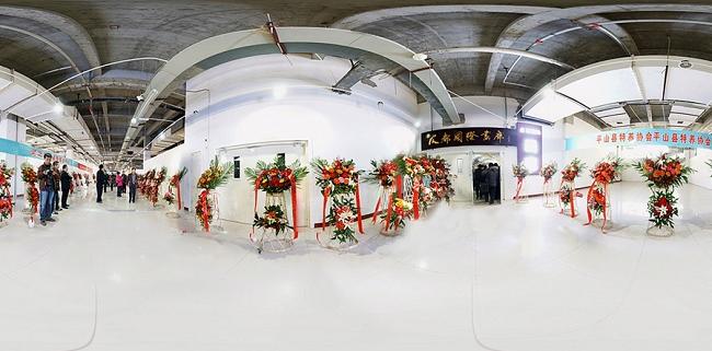 辛集国际皮革城 皮都画廊