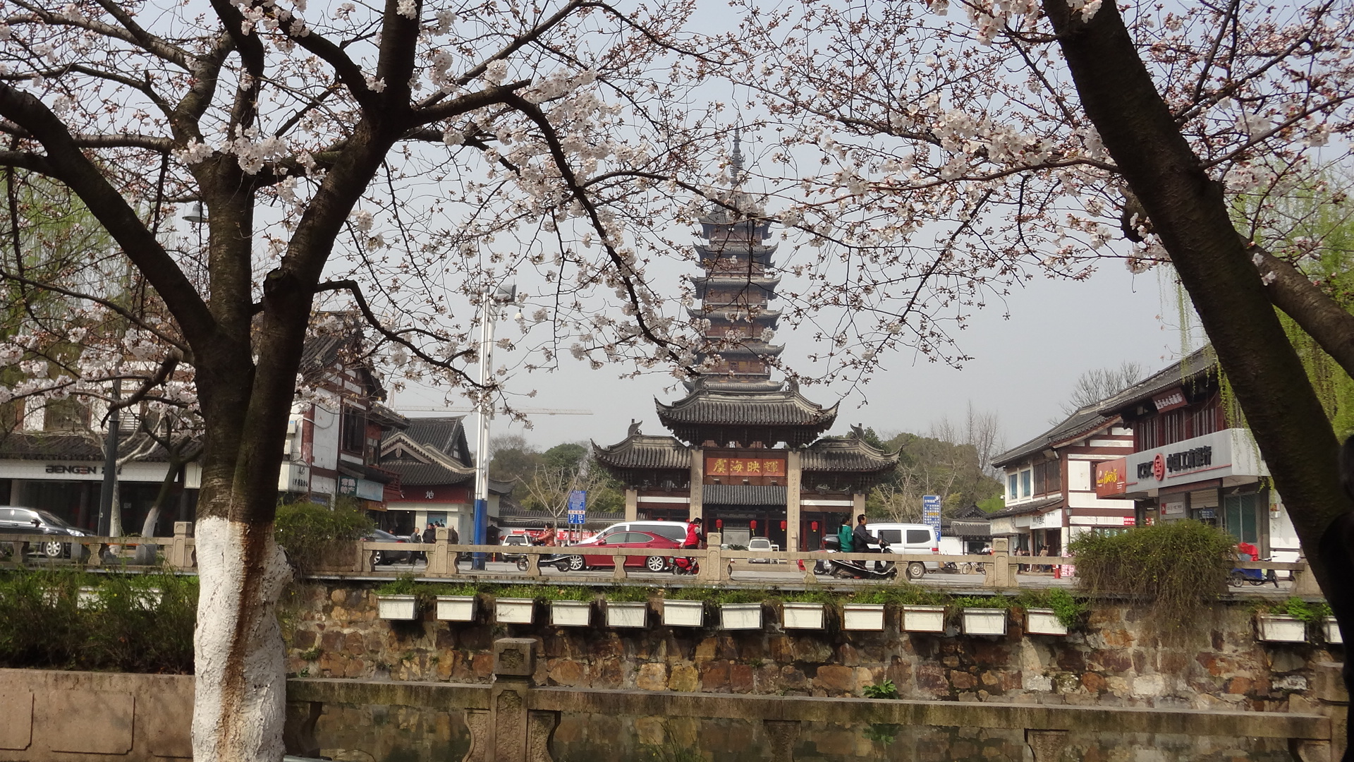 2013年江苏常熟颜港街的樱花