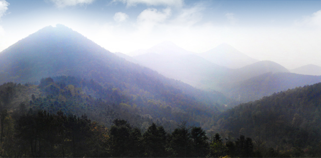 东庵森林公园山顶