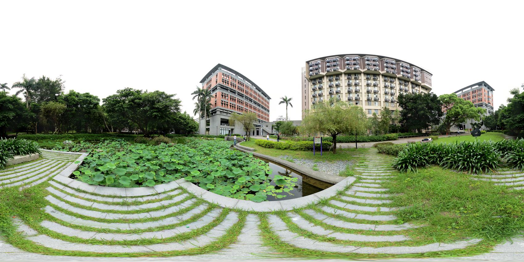 台大法學院荷花池