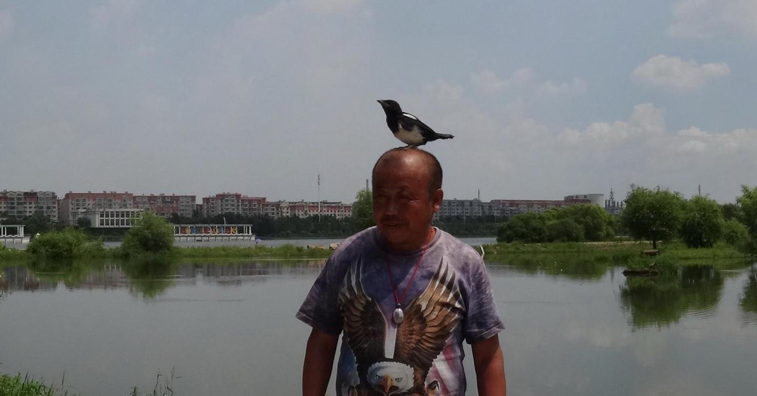 江城护鸟第一人
