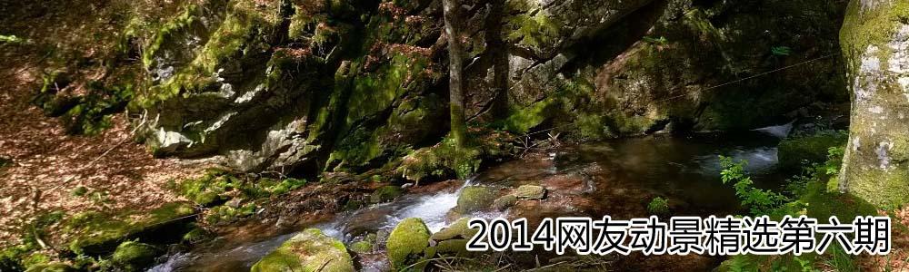2014网友动景精选第六期